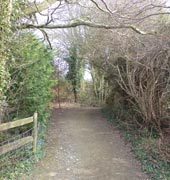 Byway in Sussex